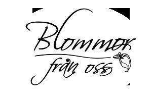 Blommor från oss Logo